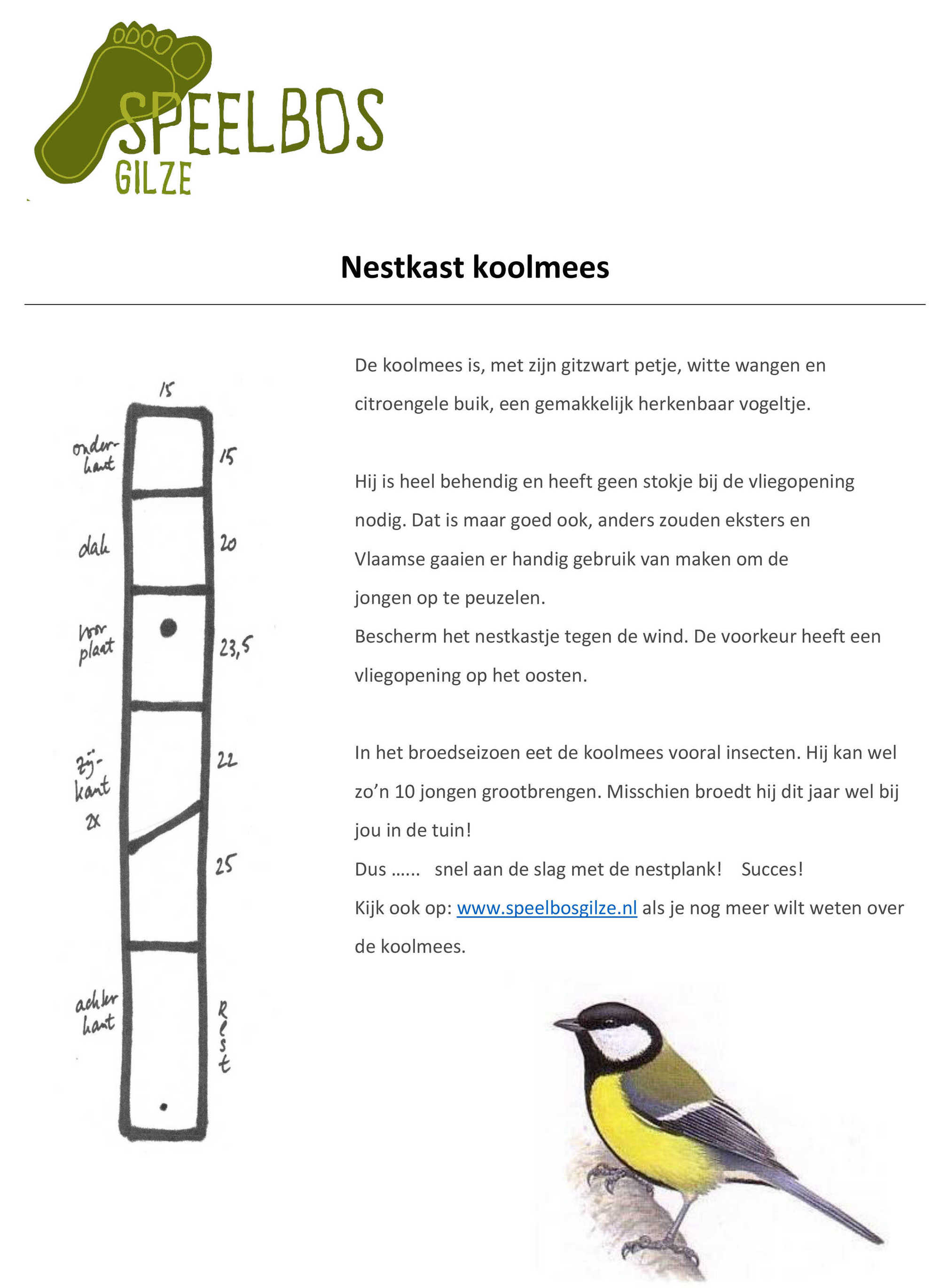 Nestkast koolmees   Speelbos Gilze